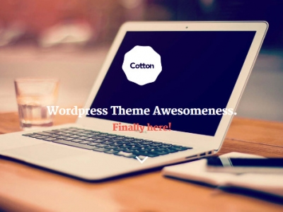 Top 10 Premium WordPress Themes for Artists and Creatives