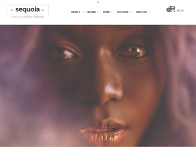 Sequoia – eCommerce and Multipurpose WP Theme