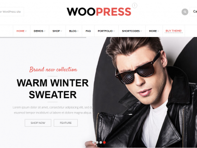 Is The WooPress – Responsive eCommerce WordPress Theme Really Good?